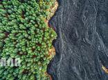 سرازیری گدازه فوران آتشفشان به جنگلی در سیسیل