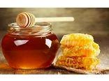 فعالیت 39 هزار کلنی زنبور عسل در سوادکوه