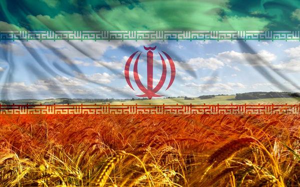 «حکمرانی غذایی»، نماد استقلال (3)