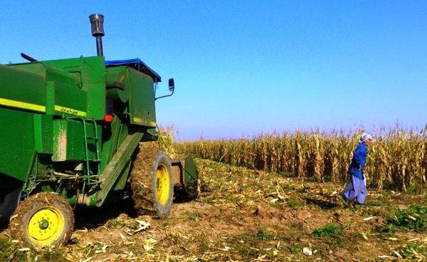 استفاده از ظرفیتهای کشاورزی خوزستان توسط تیم مجرب هلندی