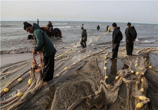 ممنوعیت صید تجاری ماهیان خاویاری در خزر تمدید شد