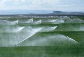 ۶۴ میلیارد تومان از اعتبار سفر رئیس جمهوری در بخش کشاورزی بوشهر محقق شد