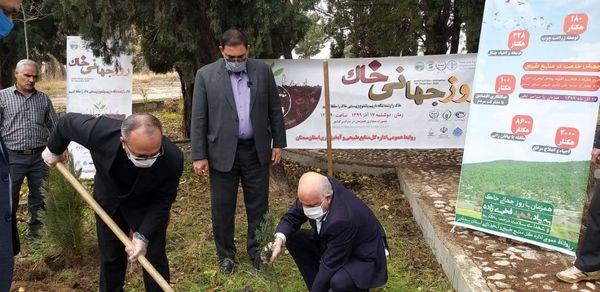 تقویت پوشش گیاهی در سطح 11208 هکتار از استان سمنان انجام میشود