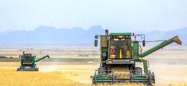 بازار محصولات کشاورزی نیازمند نظام هدفمند و حمایتی است