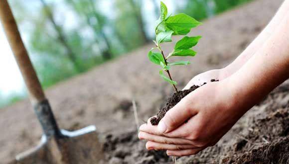 نقش کلیدی آموزش و پرورش در اشاعه فرهنگ حفاظت از منابع طبیعی