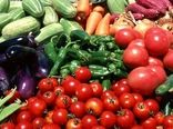 11 هزار هکتار از اراضی کشاورزی استان به زیر کشت محصولات  سبزی، صیفی و جالیزی میرود