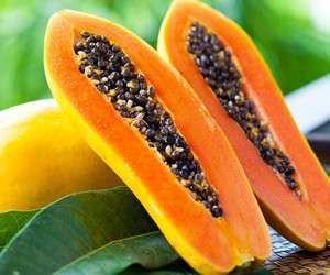 پاپایا محصولی با قابلیت تولید آسان و ارزآوری بالا