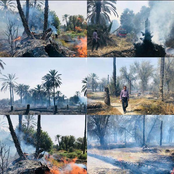 خسارت ۲۰ میلیارد ریالی آتش سوزی ۱۰۰ هکتار از باغات سرنی میناب