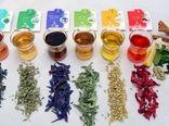 ارائه طرحهای کارآفرینانه برای صنعت گیاهان دارویی