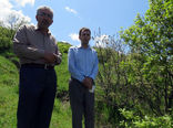 طغیان آفت پروانه دُم قهوهای در جنگلهای ارسباران و مناطق جنگلی شهرستان اهر