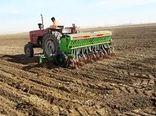 آغاز کشت غلات پاییزه در استان ایلام