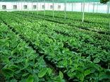 افتتاح86پروژه بخش کشاورزی درسیستان وبلوچستان