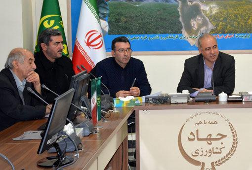 تولید سالیانه 6 میلیون قطعه از انواع ماهیان زینتی در استان آذربایجان شرقی
