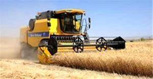 600 کمباین برداتش غلات در مزارع کشاورزی استان  انجام می دهند