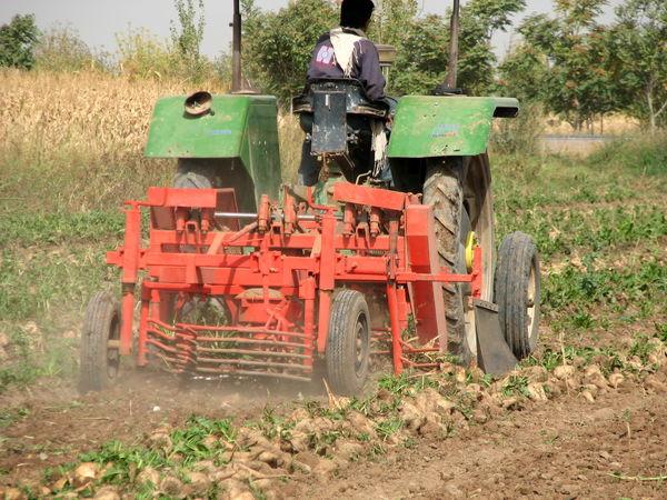 جذب ۲۱میلیارد  ریال تسهیلات مکانیزاسیون کشاورزی در شهرستان البرز