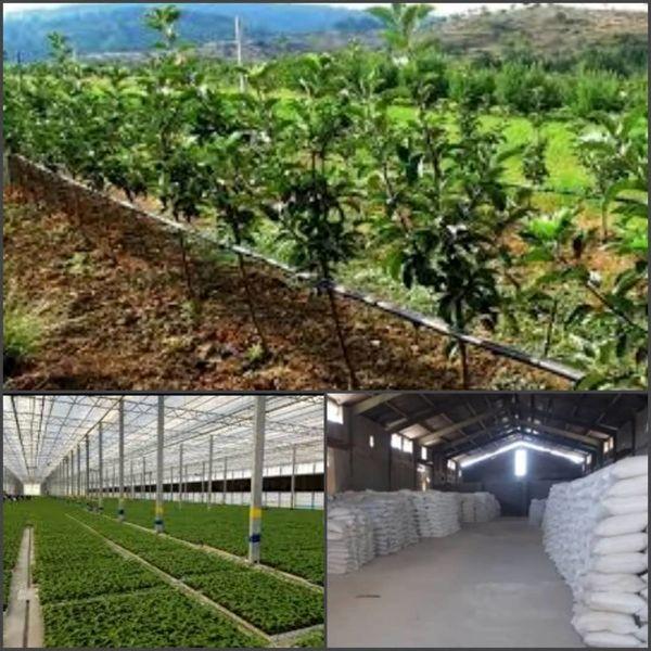 8 طرح عمرانی و تولیدی کشاورزی در خوی به بهره برداری میرسد