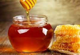 تولید عسل در خراسان شمالی  29،7 درصد افزایش داشت
