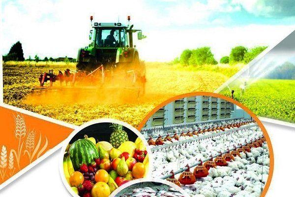 لزوم تغییر رویکرد از سنتی به مدرن در کشاورزی سمیرم