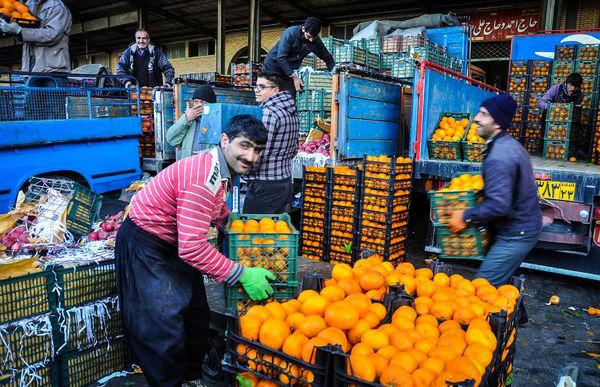 کاهش قیمت سیب و پرتقال در یزد