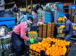 خرید توافقی پرتقال از باغداران با قیمت هر کیلوگرم ۱۵۰۰ تا ۱۷۰۰ تومان