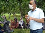 برگزاری دوره آموزشی مبارزه با آفات و بیماریهای لوبیا چیتی توسط مرکز تحقیقات کشاورزی آذربایجان شرقی
