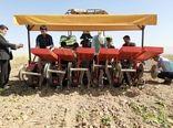 روز مرزعه کشت نشایی چغندر قند در اراضی کشاورزی شهرستان آبیک برگزارشد