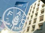 تجارب و دانش بینالمللی در زمینه سامانههای هشدار و اقدام زودهنگام در اختیار ایران قرار میگیرد