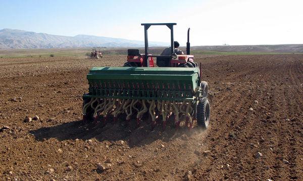 کشت جو در 1500 هکتار از اراضی کشاورزی شهرستان البرز آغاز شد