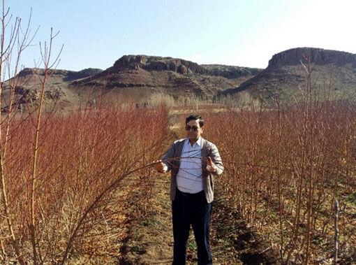 ثبت اراضی قطعات کشاورزی در شهرستان اهر